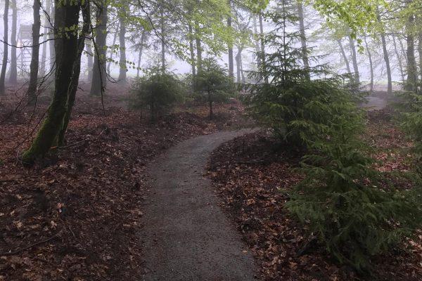 Uphill_2